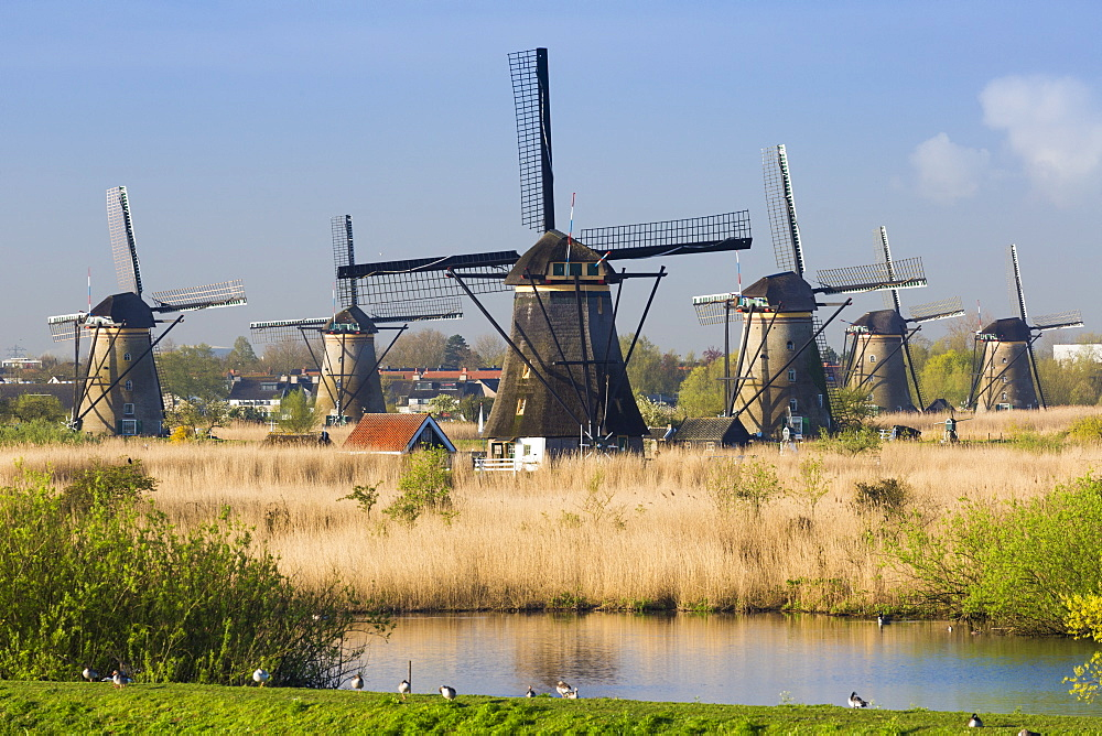 Windmills, Kinderdijk, UNESCO World Heritage Site, Netherlands, Europe - 794-4527