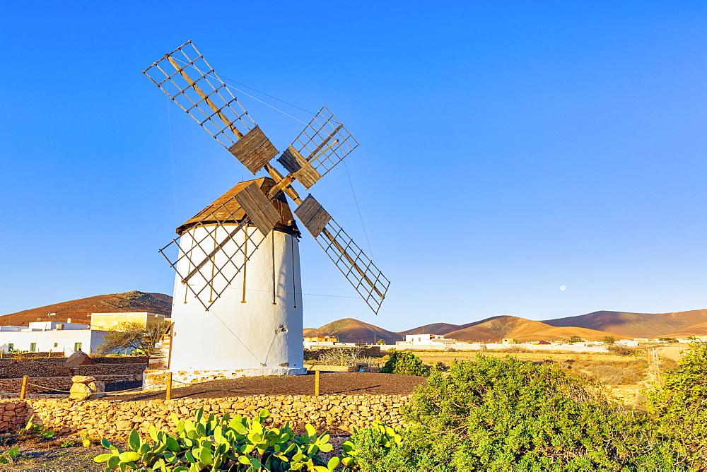 Tiscamanita, traditional windmill, Fuerteventura, Canary Islands, Spain, Atlantic, Europe