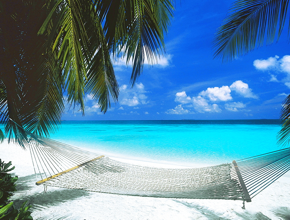 Desert island and hammock on the beach, Maldives, Indian Ocean, Asia