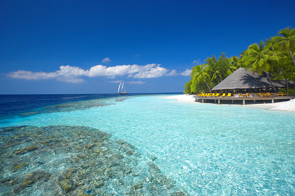 Terrace and tropical beach, The Maldives, Indian Ocean, Asia