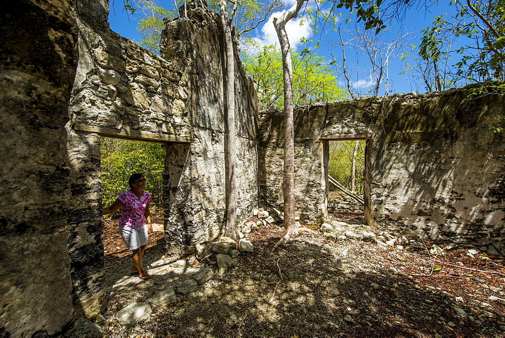 Wade's Green Plantation Historic Site, North Caicos, Turks and Caicos Islands, West Indies, Central America - 796-2437