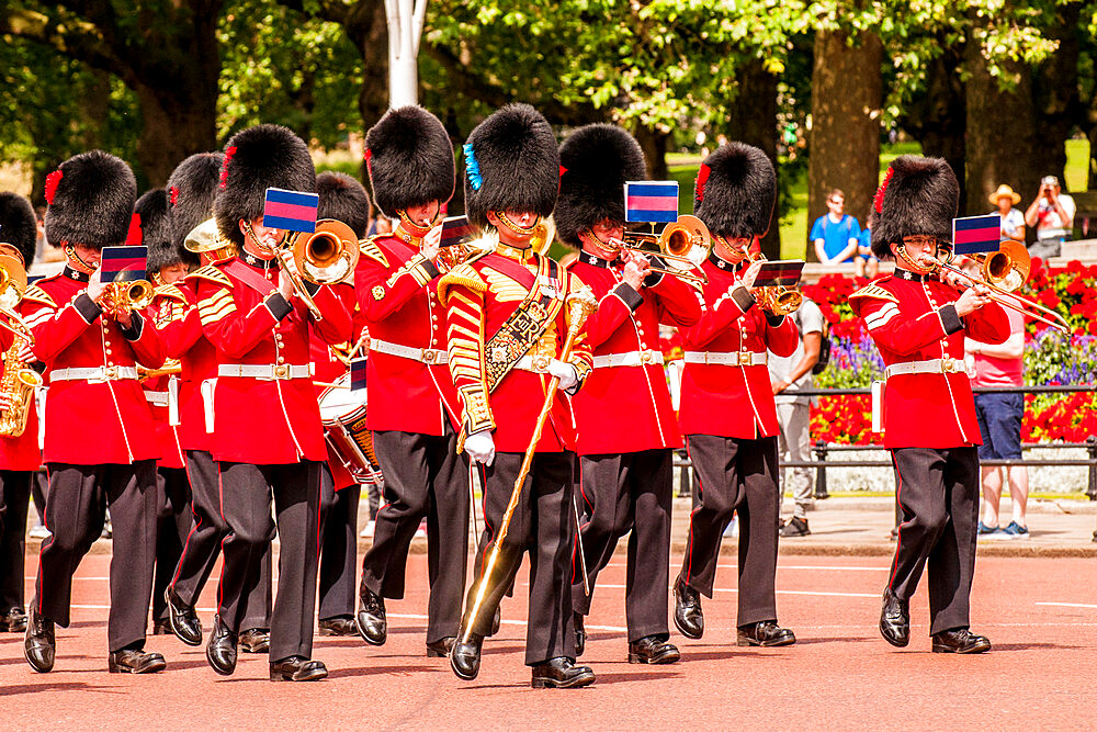 Changing of the Guard ceremonies at Buckingham Palace, London, England, United Kingdom, Europe - 796-2578