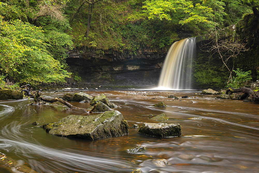 Sgwd Gwladus waterfall near Ystradfellte in the Brecon Beacons National Park, Wales, United Kingdom, Europe