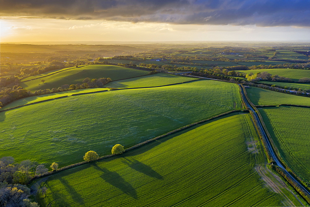 Aerial photo of rolling countryside in evening light, Livaton, Devon, England. Spring (April) 2019.