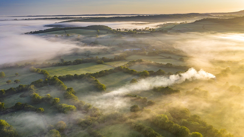Mist shrouded countryside at dawn, Coryton, Devon, England. Spring (May) 2020.