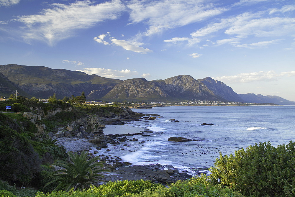 Hermanus, Western Cape, South Africa - 800-3233