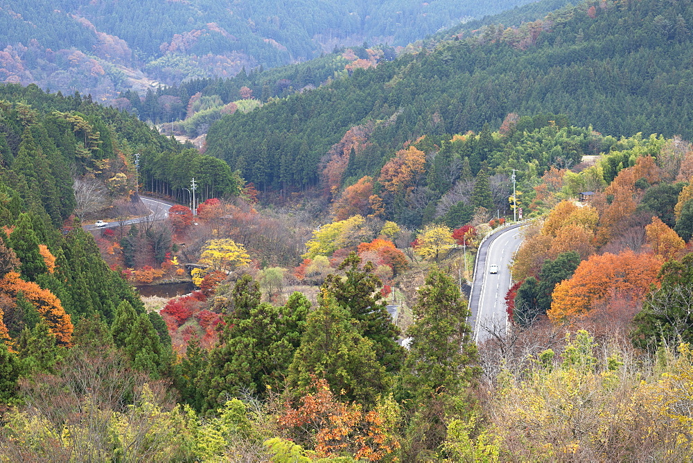 Cars driving through autumnal trees, Magome, Gifu Prefecture, Honshu, Japan, Asia