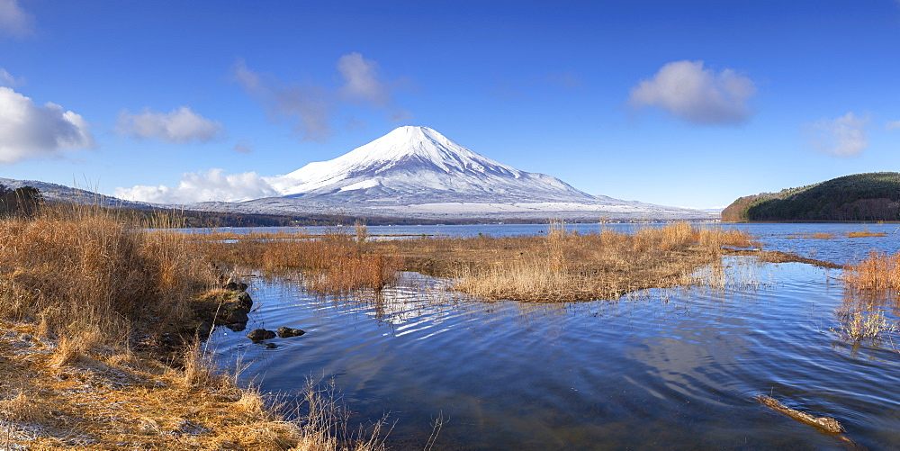 Mount Fuji, UNESCO World Heritage Site, and Lake Yamanaka, Yamanashi Prefecture, Honshu, Japan, Asia