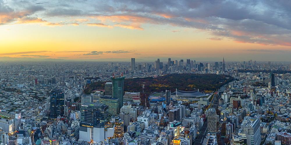 View of Shinjuku skyline and downtown at sunset, Tokyo, Japan