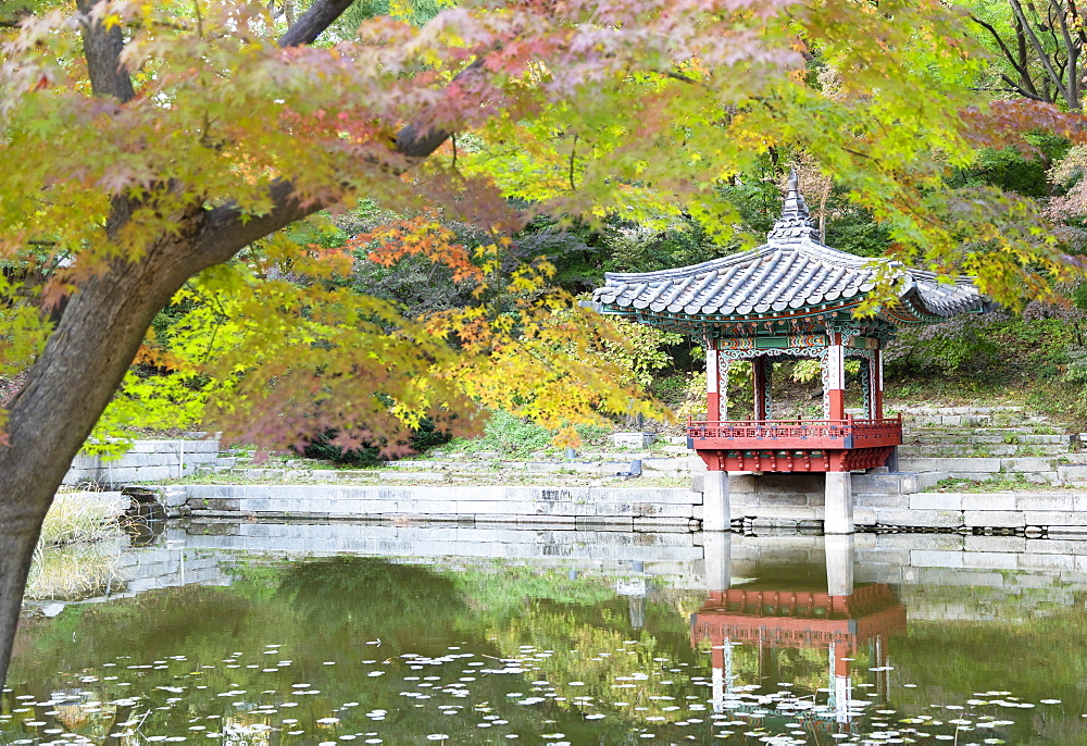 Secret Garden in Changdeokgung Palace (UNESCO World Heritage Site), Seoul, South Korea