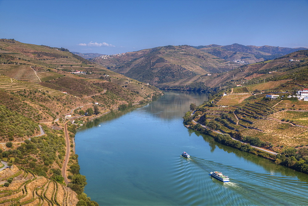 Tourist boats, vineyards and the Douro River, Alto Douro Wine Valley, UNESCO World Heritage Site, Portugal, Europe