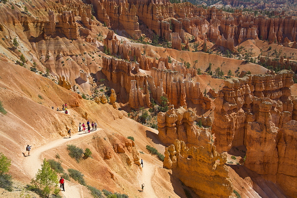 Hiking the Queens Garden Trail, Bryce Canyon National Park, Utah, United States of America, North America - 801-2048