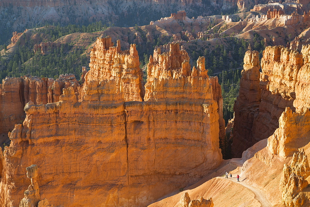 Hiking the Queens Garden Trail, Bryce Canyon National Park, Utah, United States of America, North America - 801-2049