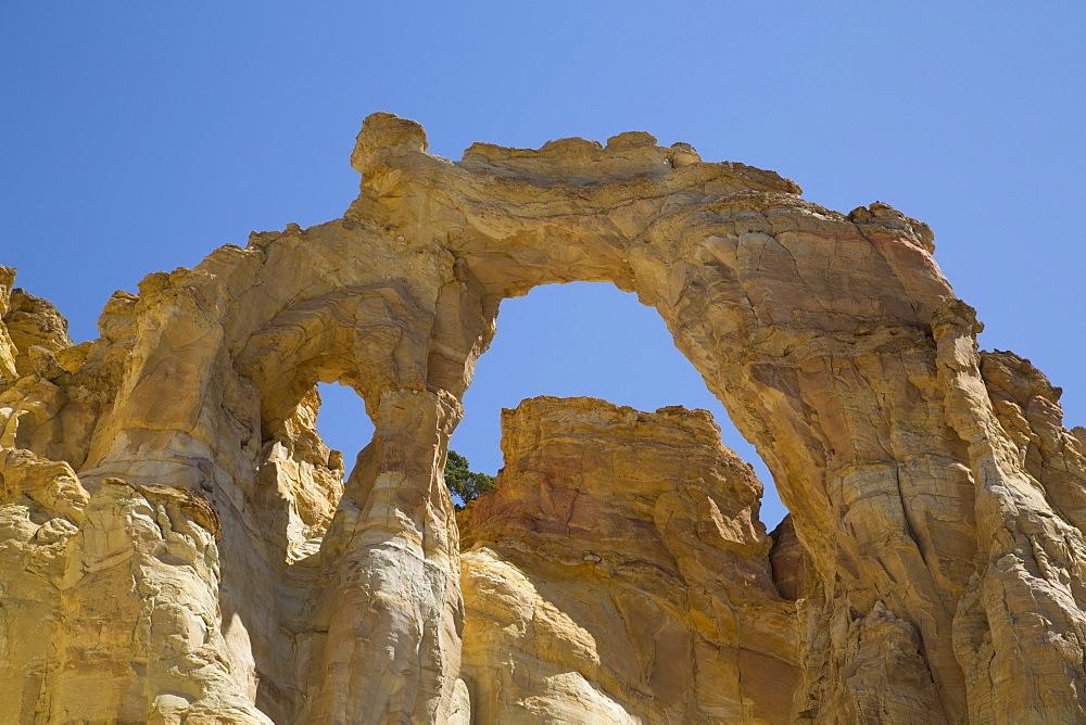 Grosvenor Arch, Grand Staircase-Escalante National Monument, Utah, United States of America, North America - 801-2053
