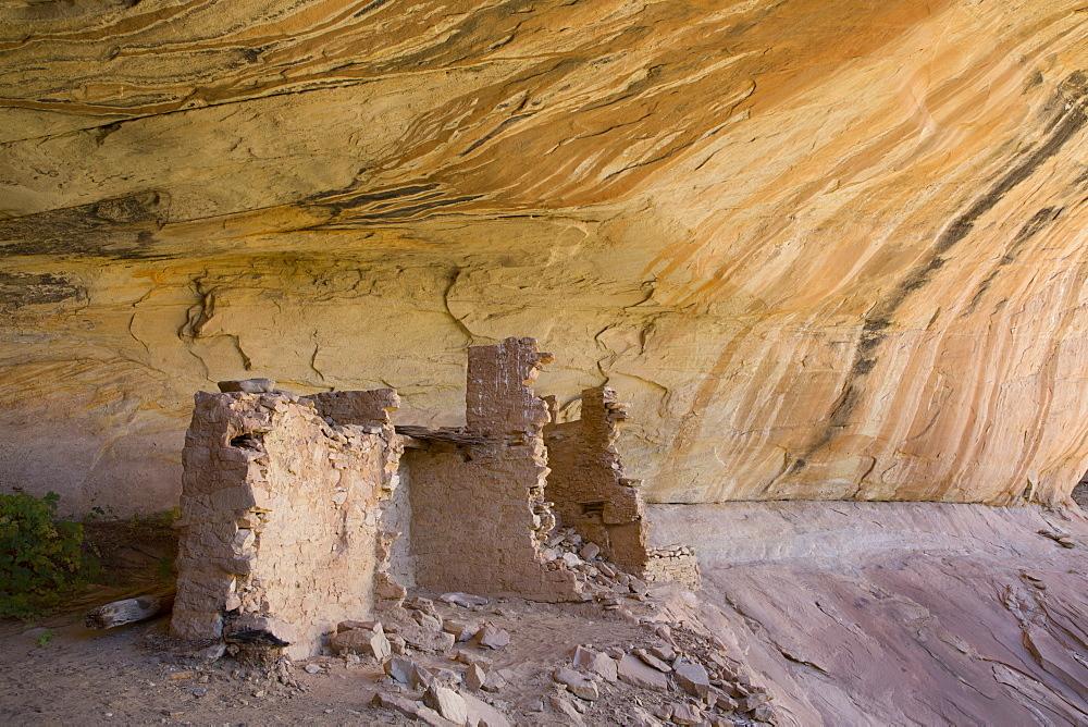 Anasazi Ruins, Monarch Cave, Butler Wash, near Bluff, Utah, United States of America, North America - 801-2165