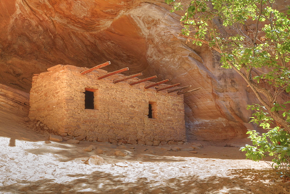 The Doll House, Ancestral (Anasazi) Pueblo building, 1150-1250 AD, Bears Ears National Monument, Cedar Mesa, Utah, United States of America, North America - 801-2426