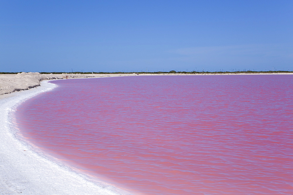 Pink Lakes, Las Coloradas, Yucatan, Mexico, North America