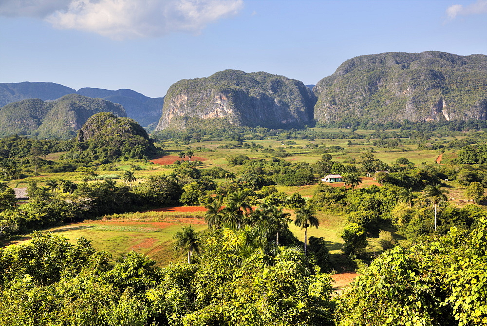 Vinales Valley, UNESCO World Heritage Site, Cuba, West Indies, Caribbean, Central America