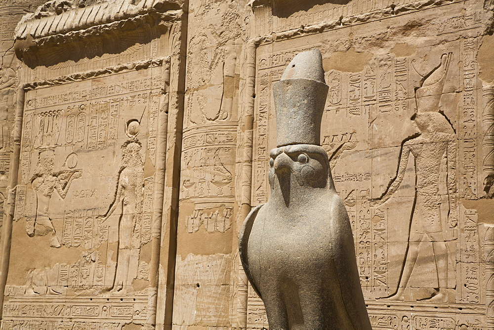 Statue of Falcon, Front of First Pylon, Temple of Horus, Edfu, Egypt, North Africa, Africa