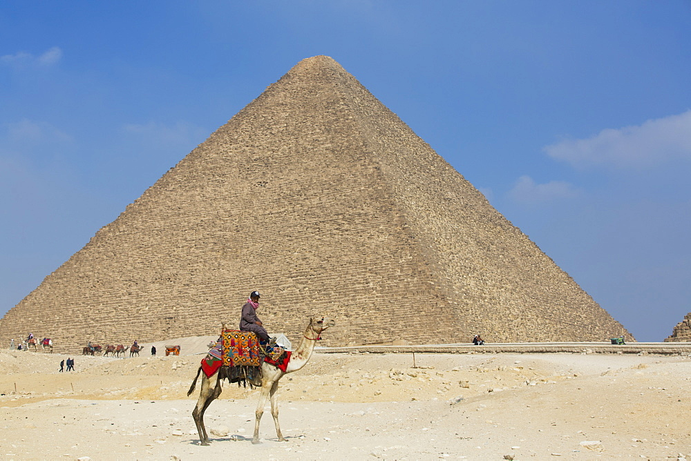 Rider and his Camel, Cheops (Khufu) Pyramid in background, Great Pyramids of Giza, UNESCO World Heritage Site, Giza, Egypt, North Africa, Africa