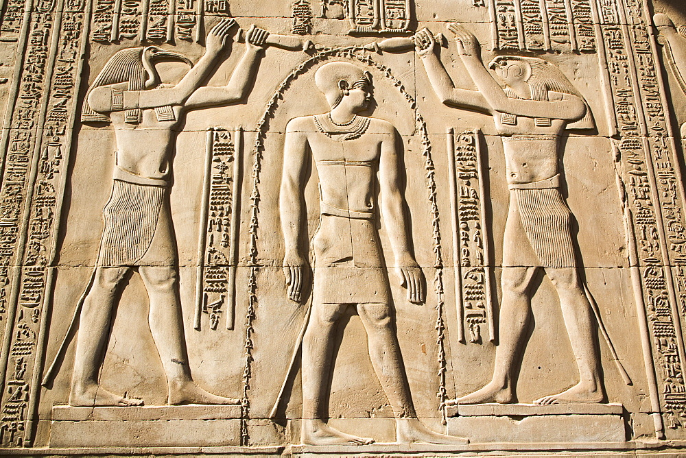 Gods Thoth on left and Haroeris on right with the Pharaoh in the centre, Wall Reliefs, Temple of Sobek and Haroeris, Kom Ombo, Egypt, North Africa, Africa - 801-2940