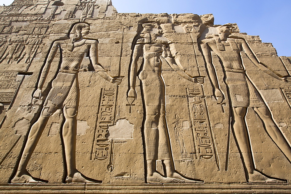 Wall Reliefs, Temple of Sobek and Haroeris, Kom Ombo, Egypt, North Africa, Africa - 801-2943