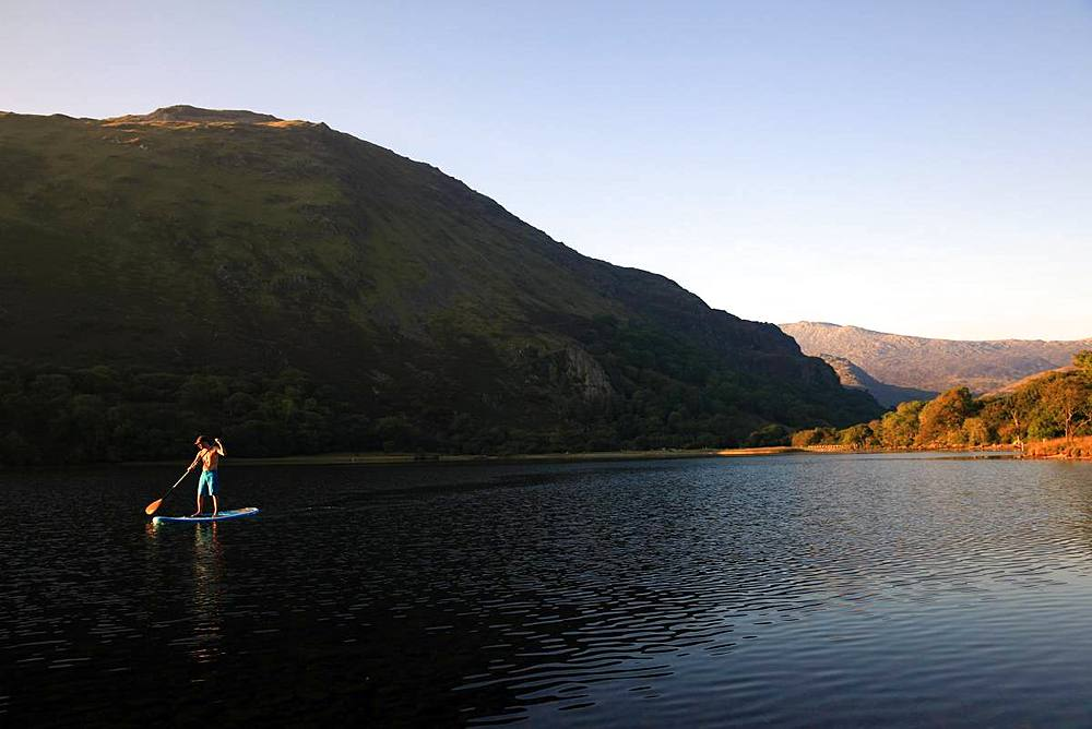 Paddle boarder on Llyn Gwynant, Snowdonia, Wales, United Kingdom, Europe