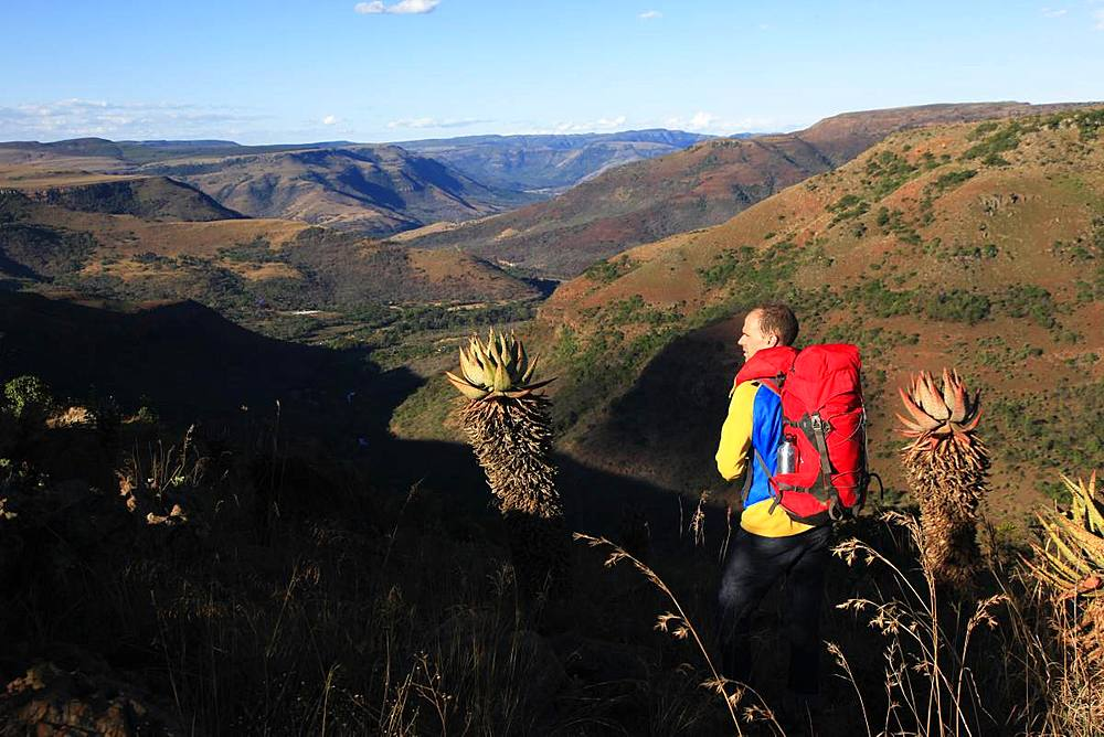 Hiker in the Drakensburg Mountains, South Africa, Africa