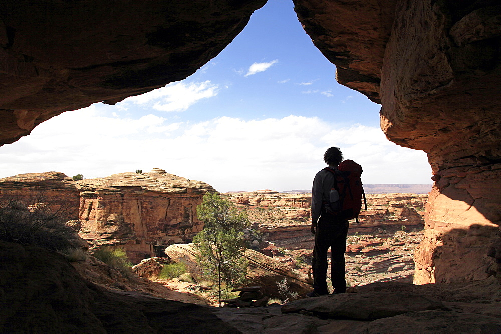 Lone hiker in Canyonlands, Utah, United States of America, North America