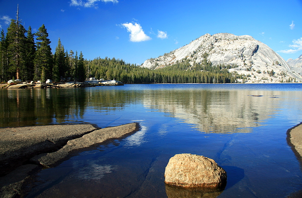 Tenaya Lake, Tuolumne Meadows, California, United States of America, North America - 802-539
