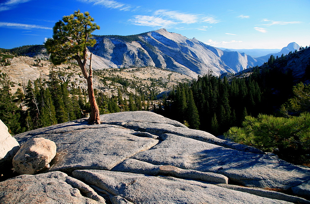Olmstead Point, Yosemite National Park, UNESCO World Heritage Site, California, United States of America, North America - 802-541