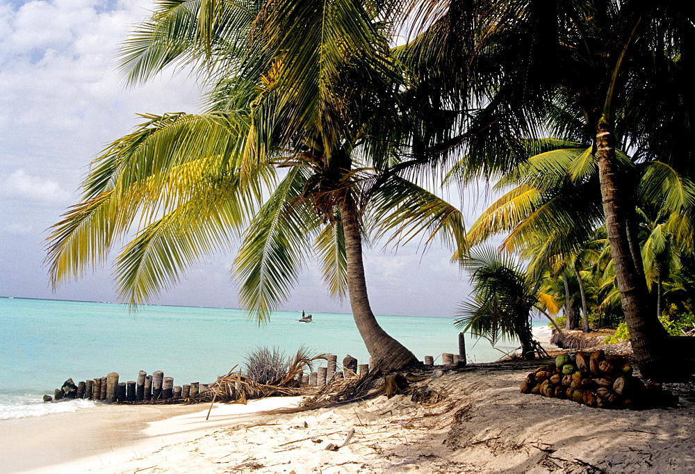 Bangaram Beach, Lakshadweep Islands, India, Indian Ocean, Asia - 804-101