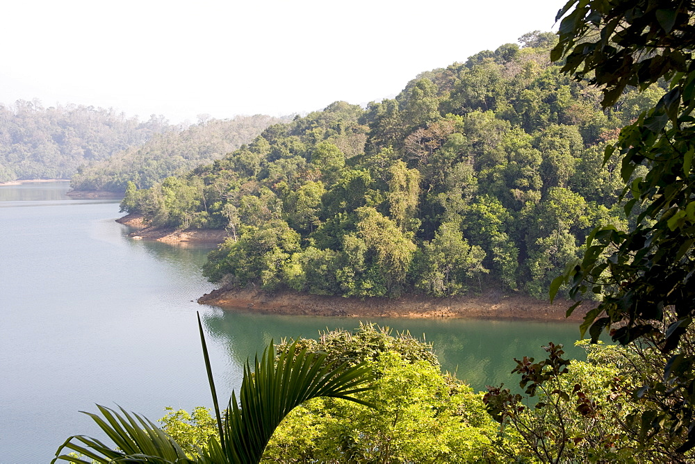 Neyyar Reservoir and wildlife sanctuary, Trivandrum, Kerala, India, Asia - 804-263