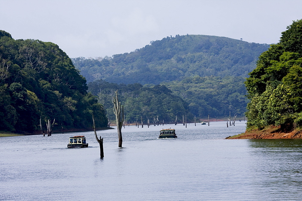 Boating, Periyar Tiger Reserve, Thekkady, Kerala, India, Asia - 804-340