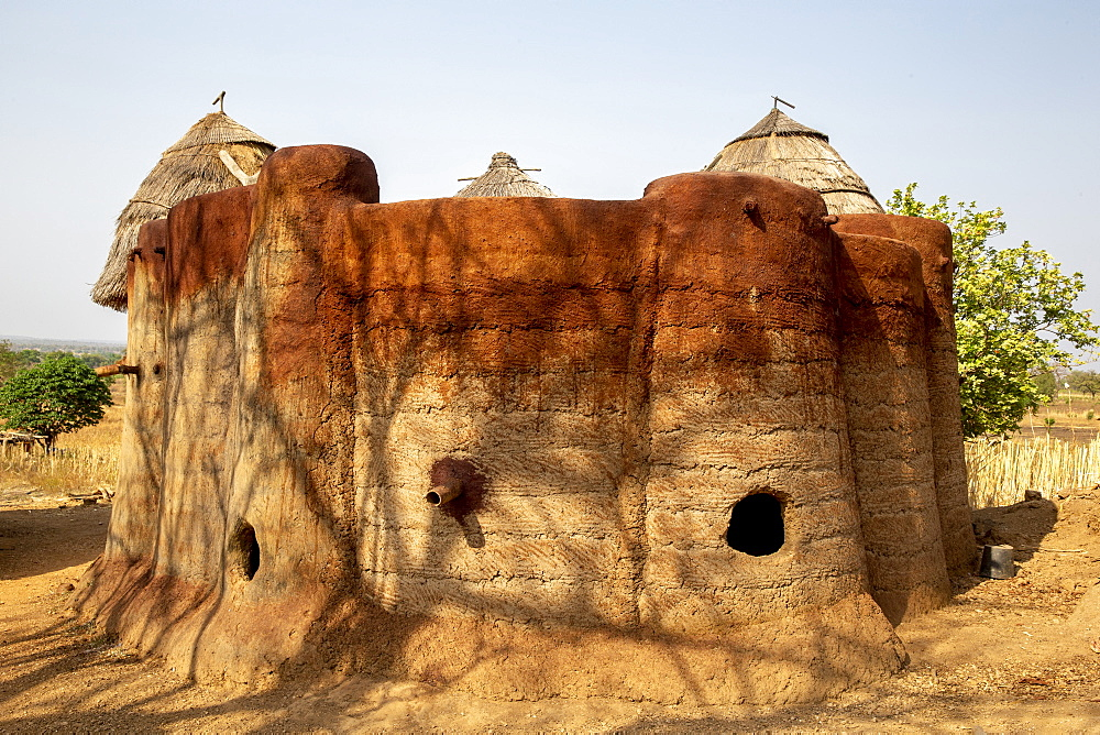 Batammariba building in a Koutammakou village in North Togo, West Africa, Africa - 809-7845