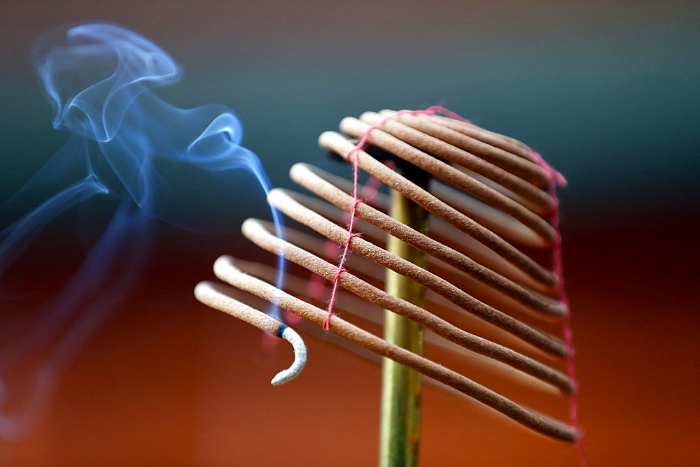 Burning spiral incense sticks in Taoist ceremony, Mau Son Taoist temple, Sapa, Vietnam, Indochina, Southeast Asia, Asia