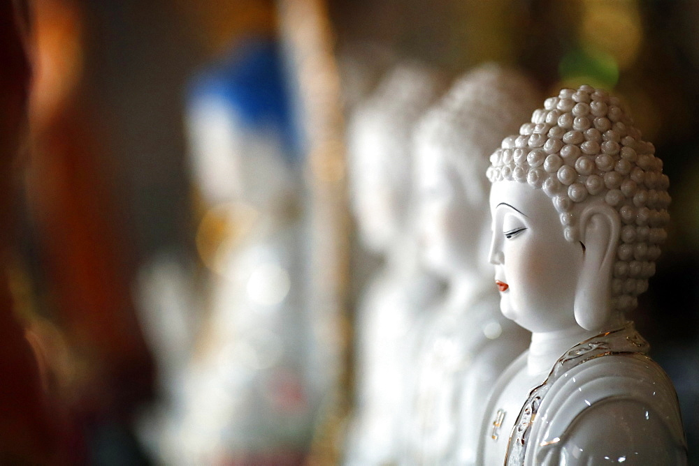 Row of Buddha statues in a Buddhist temple, Ho Chi Minh City, Vietnam, Indochina, Southeast Asia, Asia - 809-7923