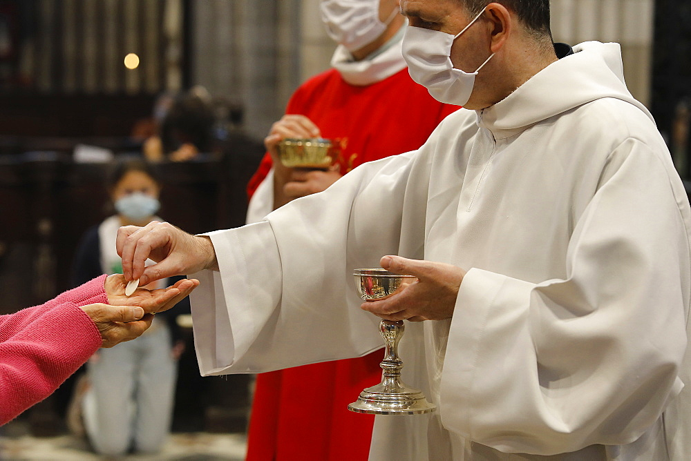 Messe de la Pentecote (Pentecost Mass), Notre Dame d'Evreux, Eure, France, Europe - 809-8118