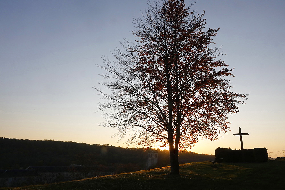Tree and cross at dusk at Le Bec Hellouin, Eure, Normandy, France, Europe - 809-8119