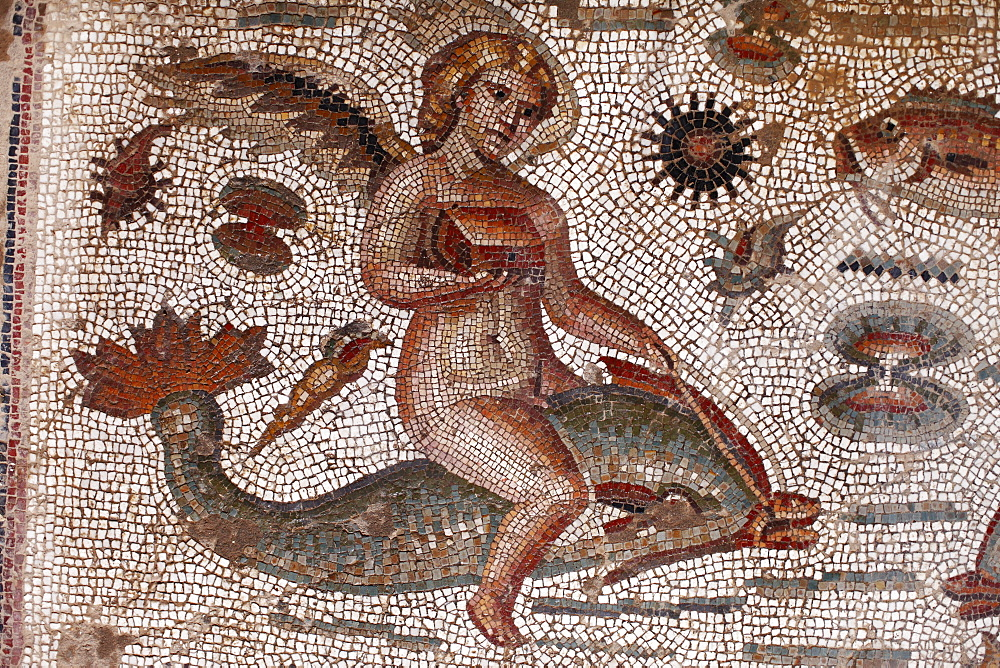 Angel riding on a dolphin, part of the Amphitrite Roman mosaic, House of Amphitrite, Bulla Regia Archaeological Site, Tunisia, North Africa, Africa - 813-130