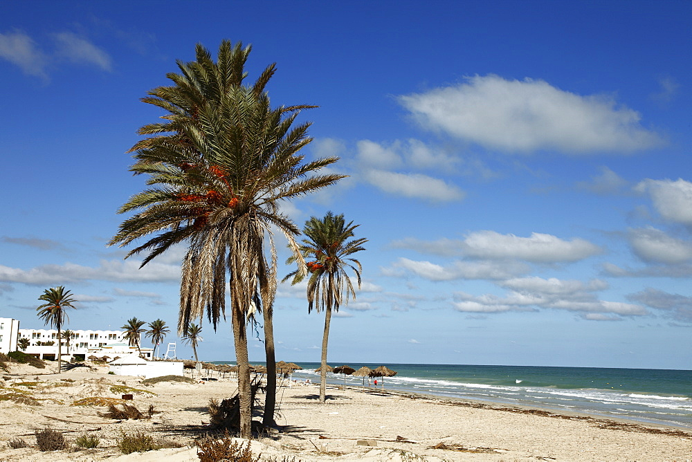 Tourist zone beaches on the Mediterranean coast, Djerba, Tunisia, North Africa, Africa