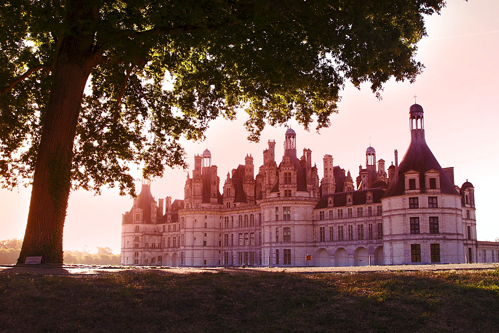North facade in the early morning, Chateau de Chambord, UNESCO World Heritage Site, Loir-et-Cher, Loire Valley, France, Europe - 813-238