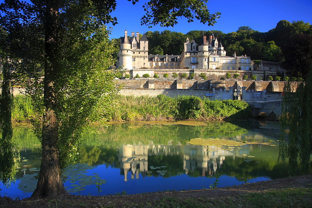 Chateau d'Usse on the Indre River, Rigne-Usse, Indre et Loire, Loire Valley, France, Europe - 813-239