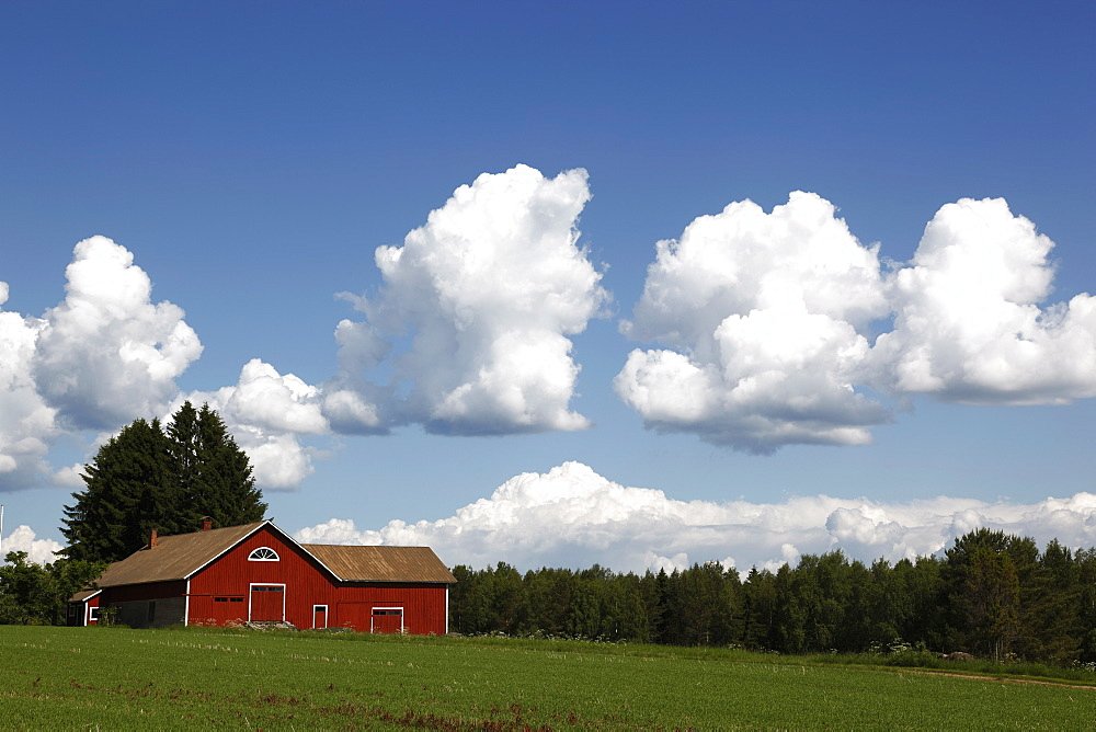 Cumulus clouds and countryside, Savonlinna, Savonia, Finland, Scandinavia, Europe