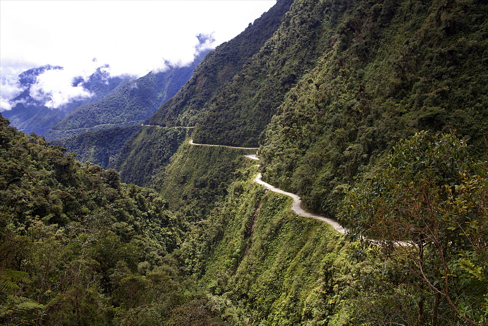 View of the El Camino della Muerte, Yungas Valley, Bolivia, South America - 814-1587