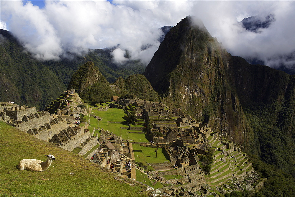 View over Machu Picchu, UNESCO World Heritage Site,  Sacred Valley, Peru, South America - 814-1598