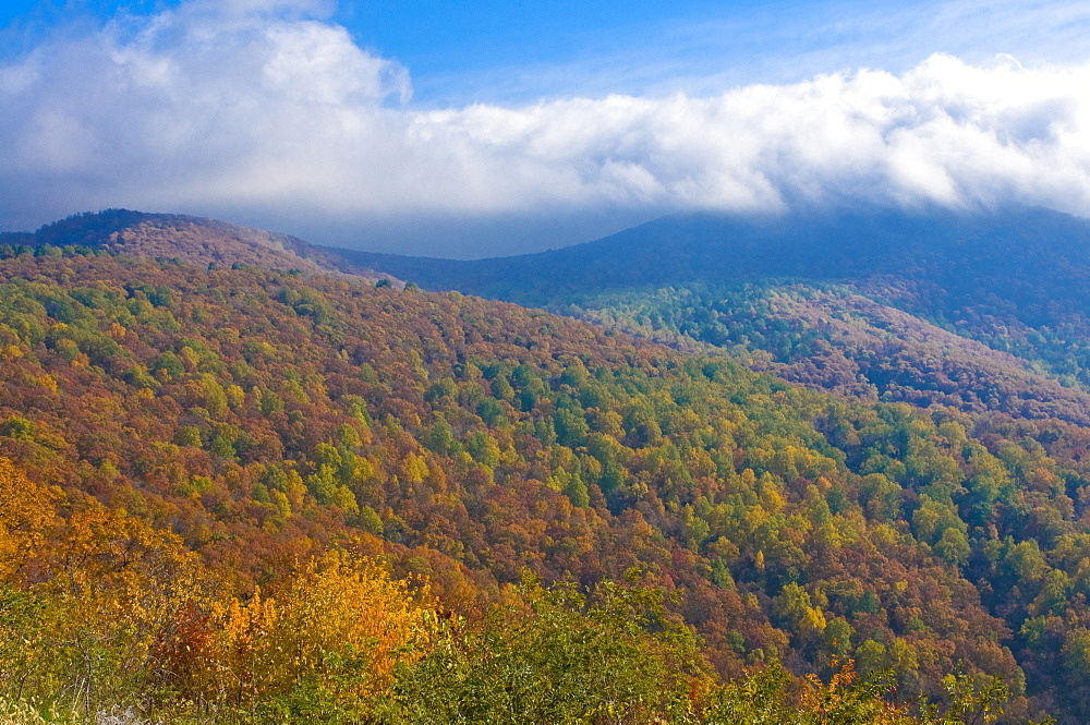 View over the Shenandoah National Park with beautiful foliage in the Indian summer, Virginia, United States of America, North America