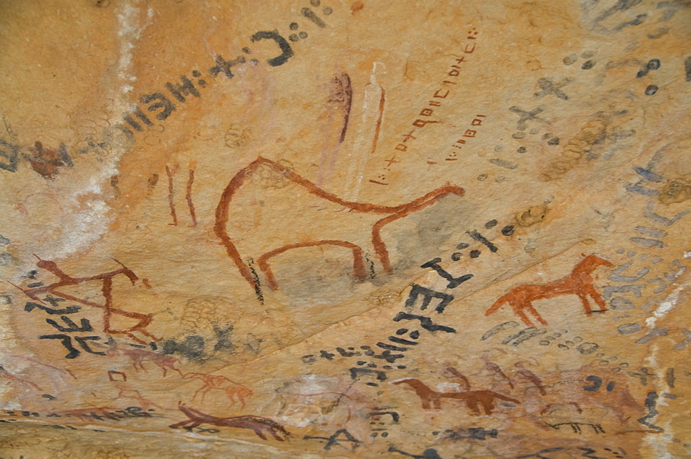 Rock paintings in the Tassili n'Ajjer, UNESCO World Heritage Site, Southern Algeria, North Africa, Africa