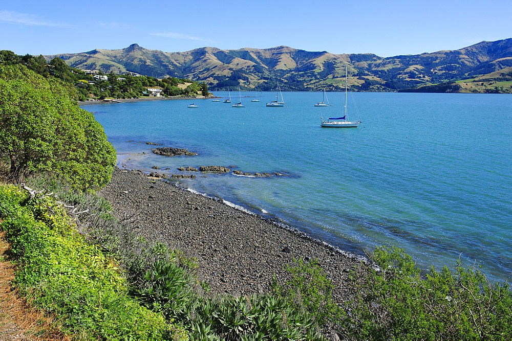 Little boats in the Akaroa harbour, Banks Peninsula, Canterbury, South Island, New Zealand, Pacific