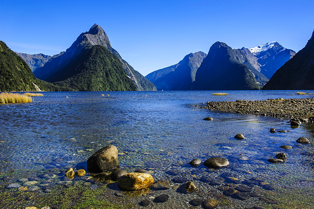 The steep cliffs of Milford Sound, Fiordland National Park, UNESCO World Heritage Site, South Island, New Zealand, Pacific